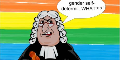 The Right to Gender Recognition of Transgender Persons