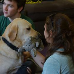 Guide Dogs come to Oriel
